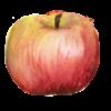 Apples_22
