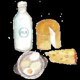 milch eier