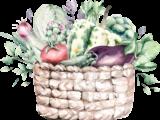 Gemüse Oderwald